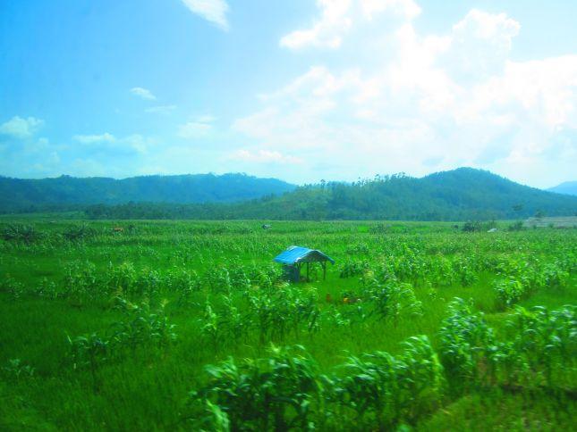 Train ride from Jakarta to Yogyakarta
