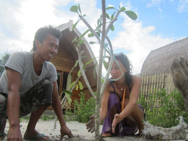 Tree planting at History Bungalows Gili Trawangan