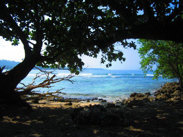 beaches in vanuatu