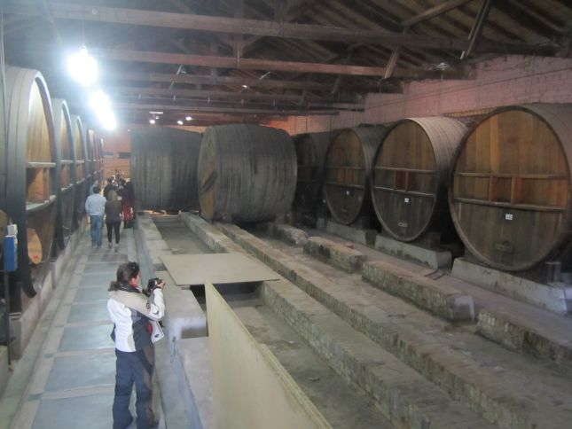 mendoza-wine-museum-san-felipe-la-rural-cellar.JPG