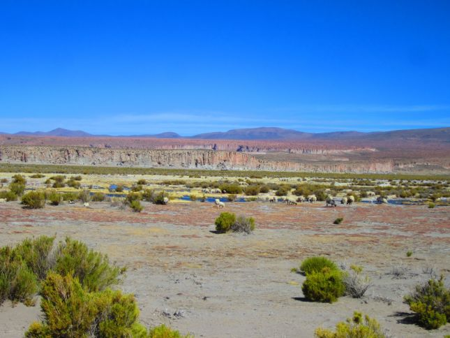 road-ollague-to-uyuni-2.JPG