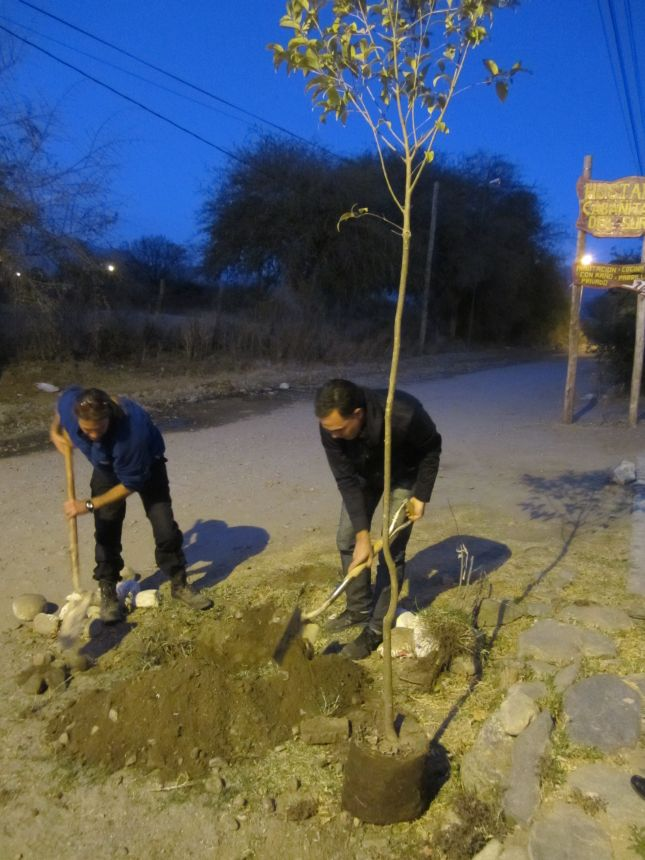 tree-planting-la-morada-cafayate-2.JPG