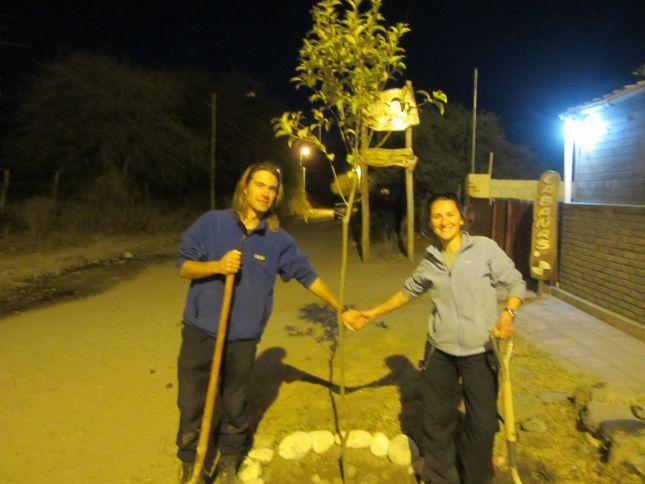 tree-planting-la-morada-cafayate-4.JPG