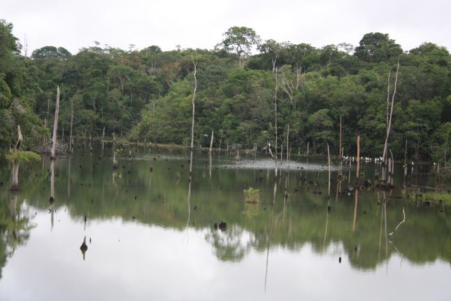 amazon-water-lagoon.JPG