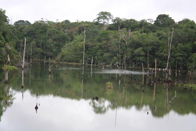 amazon-water-lagoon.JPG