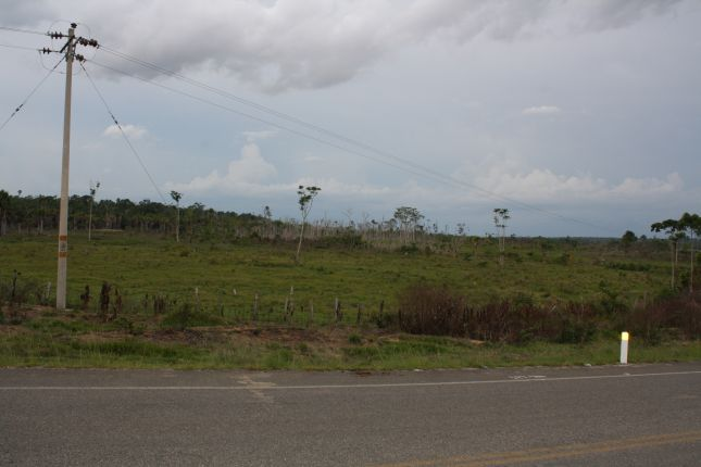 deforestation-near-puerto-maldonado-2.JPG