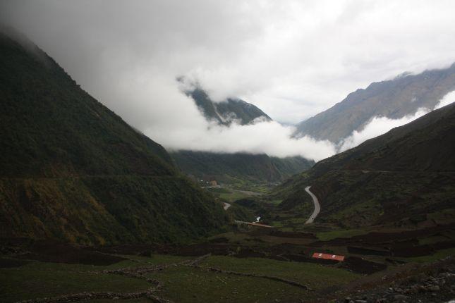 descending-abra-pirhuayani-vegetation.JPG