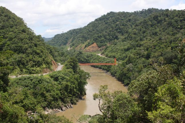 jungle-river-bridge.JPG