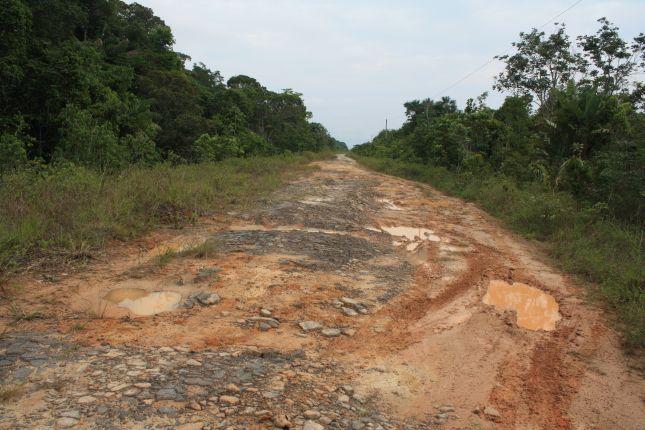 road-condition-BR319-2.JPG