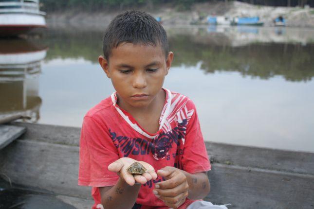 tiny-turtle.JPG