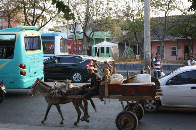 cartagena-street-donkeycart.JPG