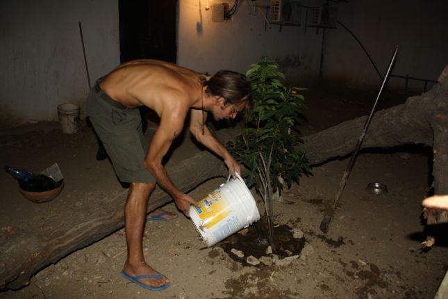 watering-coro-tree.JPG