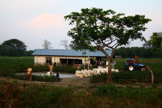 cartagena-mompox-farmers.JPG