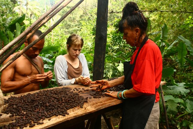 drying-cacao.JPG